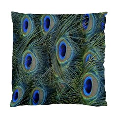 Peacock Feathers Blue Bird Nature Standard Cushion Case (two Sides)