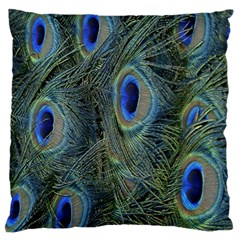 Peacock Feathers Blue Bird Nature Large Cushion Case (one Side)