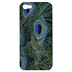 Peacock Feathers Blue Bird Nature Apple Iphone 5 Hardshell Case
