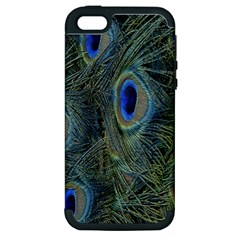 Peacock Feathers Blue Bird Nature Apple Iphone 5 Hardshell Case (pc+silicone)