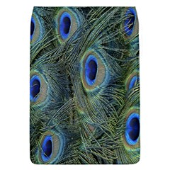 Peacock Feathers Blue Bird Nature Flap Covers (l)
