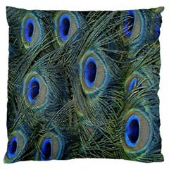 Peacock Feathers Blue Bird Nature Large Flano Cushion Case (two Sides)