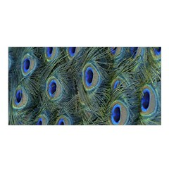 Peacock Feathers Blue Bird Nature Satin Shawl