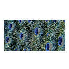 Peacock Feathers Blue Bird Nature Satin Wrap