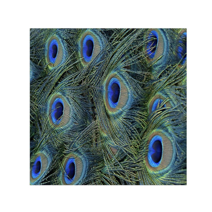 Peacock Feathers Blue Bird Nature Small Satin Scarf (Square)