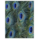 Peacock Feathers Blue Bird Nature Drawstring Bag (Large) Front