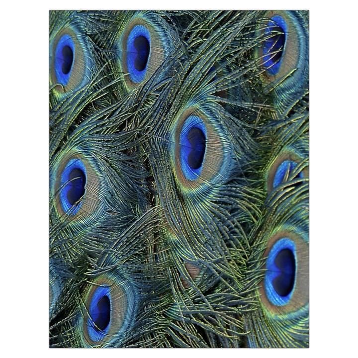Peacock Feathers Blue Bird Nature Drawstring Bag (Large)