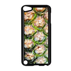 Pineapple Texture Macro Pattern Apple Ipod Touch 5 Case (black)