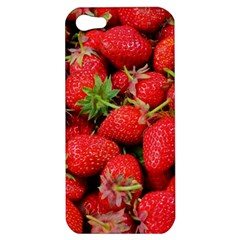 Strawberries Berries Fruit Apple Iphone 5 Hardshell Case