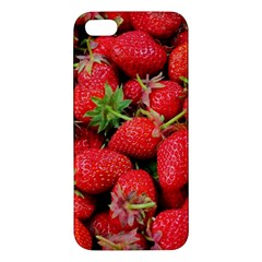 Strawberries Berries Fruit Apple Iphone 5 Premium Hardshell Case