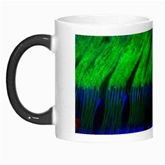 Cells Rainbow Morph Mugs