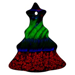 Cells Rainbow Christmas Tree Ornament (two Sides)