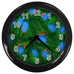 Fluorescence Microscopy Green Blue Wall Clocks (black)