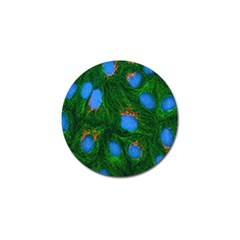 Fluorescence Microscopy Green Blue Golf Ball Marker (4 Pack)