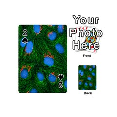 Fluorescence Microscopy Green Blue Playing Cards 54 (mini)