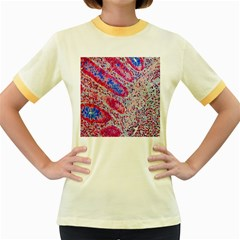 Histology Inc Histo Logistics Incorporated Alcian Blue Women s Fitted Ringer T Shirts