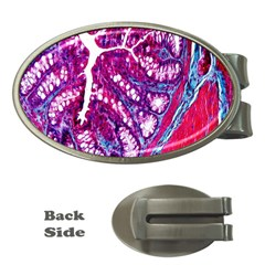 Histology Inc Histo Logistics Incorporated Masson s Trichrome Three Colour Staining Money Clips (oval)