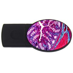 Histology Inc Histo Logistics Incorporated Masson s Trichrome Three Colour Staining Usb Flash Drive Oval (4 Gb)