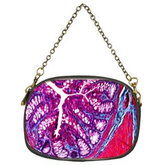 Histology Inc Histo Logistics Incorporated Masson s Trichrome Three Colour Staining Chain Purses (two Sides)