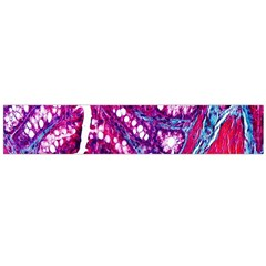 Histology Inc Histo Logistics Incorporated Masson s Trichrome Three Colour Staining Flano Scarf (large)