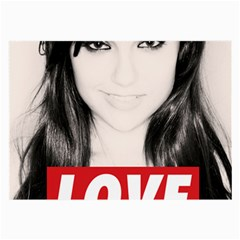Sasha Grey Love Large Glasses Cloth