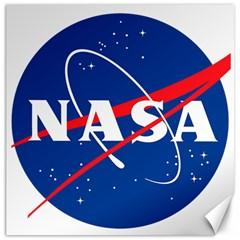 Nasa Logo Canvas 16  X 16