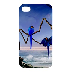 Wonderful Blue  Parrot Looking To The Ocean Apple Iphone 4/4s Hardshell Case