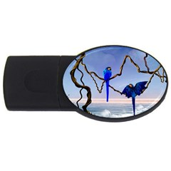 Wonderful Blue  Parrot Looking To The Ocean Usb Flash Drive Oval (2 Gb)
