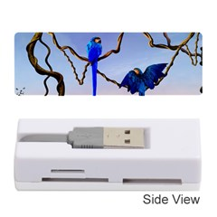 Wonderful Blue  Parrot Looking To The Ocean Memory Card Reader (stick)