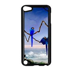 Wonderful Blue  Parrot Looking To The Ocean Apple Ipod Touch 5 Case (black)