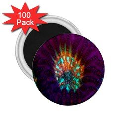Live Green Brain Goniastrea Underwater Corals Consist Small 2 25  Magnets (100 Pack)