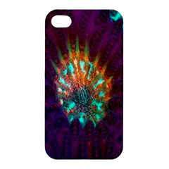 Live Green Brain Goniastrea Underwater Corals Consist Small Apple Iphone 4/4s Hardshell Case
