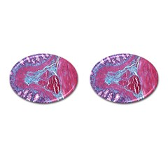 Natural Stone Red Blue Space Explore Medical Illustration Alternative Cufflinks (oval)