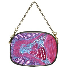 Natural Stone Red Blue Space Explore Medical Illustration Alternative Chain Purses (two Sides)