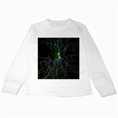 Synaptic Connections Between Pyramida Neurons And Gabaergic Interneurons Were Labeled Biotin During Kids Long Sleeve T Shirts