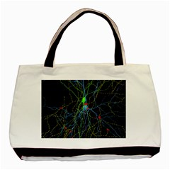 Synaptic Connections Between Pyramida Neurons And Gabaergic Interneurons Were Labeled Biotin During Basic Tote Bag