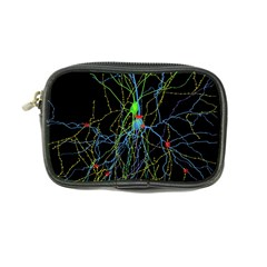 Synaptic Connections Between Pyramida Neurons And Gabaergic Interneurons Were Labeled Biotin During Coin Purse