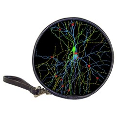 Synaptic Connections Between Pyramida Neurons And Gabaergic Interneurons Were Labeled Biotin During Classic 20 Cd Wallets