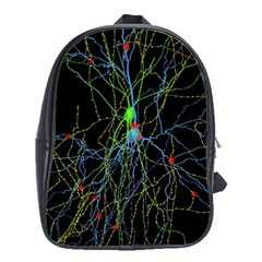 Synaptic Connections Between Pyramida Neurons And Gabaergic Interneurons Were Labeled Biotin During School Bag (large)