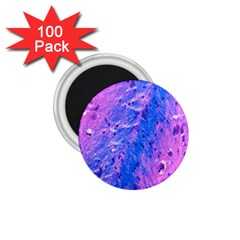 The Luxol Fast Blue Myelin Stain 1 75  Magnets (100 Pack)