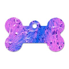 The Luxol Fast Blue Myelin Stain Dog Tag Bone (two Sides)