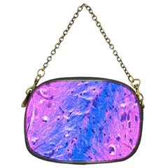 The Luxol Fast Blue Myelin Stain Chain Purses (two Sides)