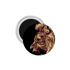 Angry Male Lion Gold 1 75  Magnets