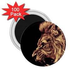 Angry Male Lion Gold 2 25  Magnets (100 Pack)