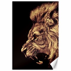 Angry Male Lion Gold Canvas 20  X 30