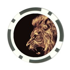 Angry Male Lion Gold Poker Chip Card Guard