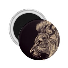 Angry Male Lion 2 25  Magnets