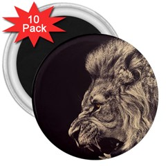 Angry Male Lion 3  Magnets (10 Pack)