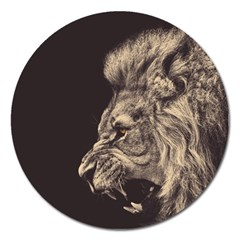 Angry Male Lion Magnet 5  (round)