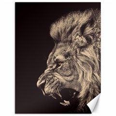 Angry Male Lion Canvas 18  X 24